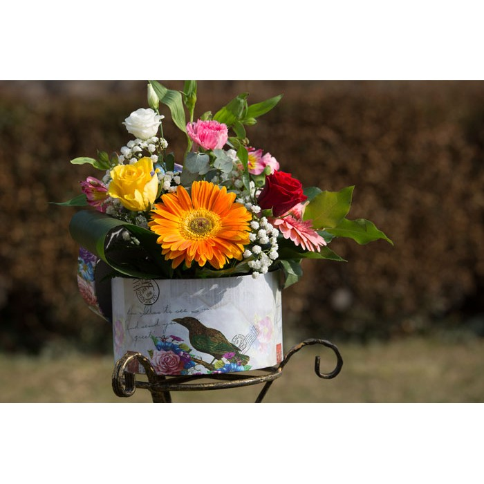 Aranjamente Florale Cutie De Culoare