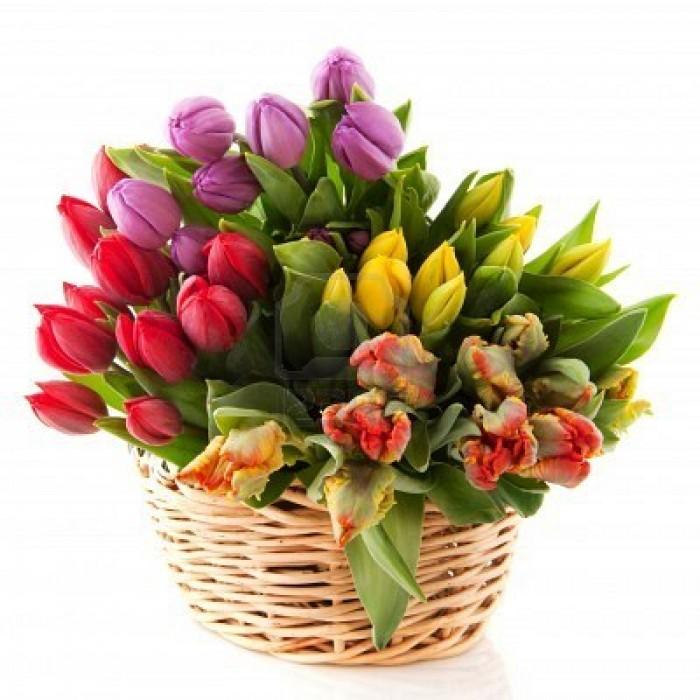 Aranjamente Florale Cos 45 Lalele