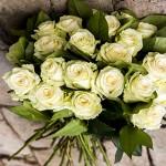 Buchet 37 trandafiri albi