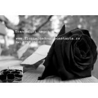 Trandafirul negru