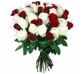 Buchet 39 trandafiri albi si rosii